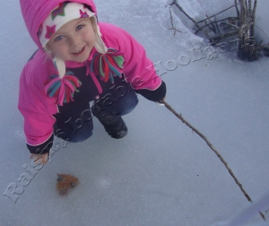 Discovery of a leaf shaped like a heart trapped in the ice!